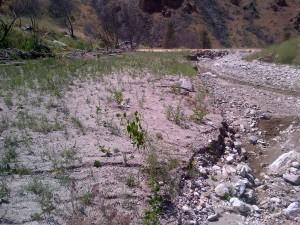 Granite Creek blowout upstream of the South Fork Boise River Road.